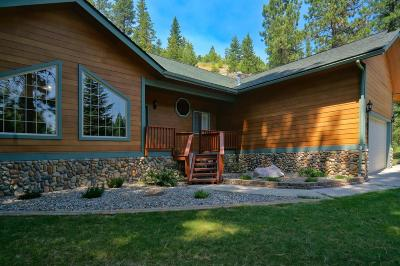 Sandpoint Single Family Home For Sale: 206 Serenity Place