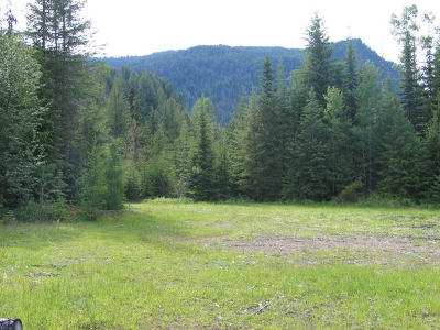 Clark Fork Residential Lots & Land For Sale: NNA 238 Acre River Road