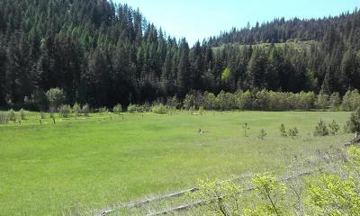 Priest River Residential Lots & Land For Sale: NNA Bodie Canyon