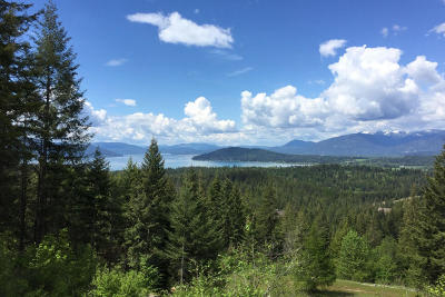 Sandpoint Residential Lots & Land For Sale: Blk1 Lot1 S Idaho Club Drive