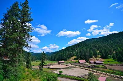 Harrison Farm & Ranch For Sale: 10113 E Blue Lake Rd