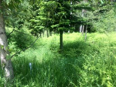 Residential Lots & Land For Sale: 220 Greenview Terrace