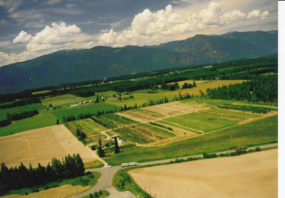 Bonners Ferry Residential Lots & Land For Sale: 510526 Us-95