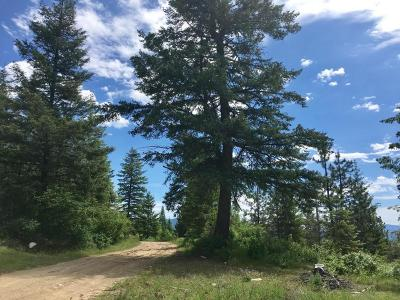 Priest River Residential Lots & Land For Sale: N Whittum Rd