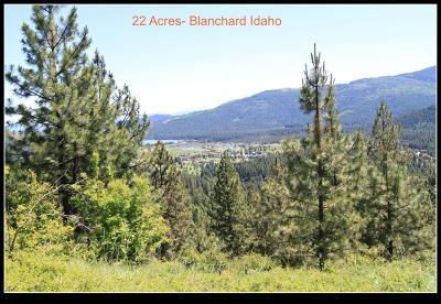 Blanchard Residential Lots & Land For Sale: 590 Forest Way