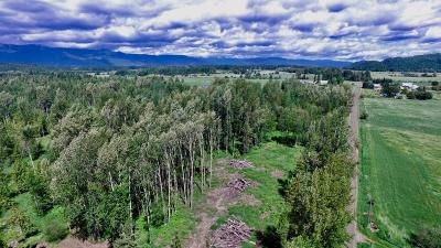 Sandpoint Residential Lots & Land For Sale: Lot 2 Sunnyside Cutoff Rd