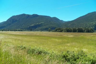 Clark Fork Residential Lots & Land For Sale: 1200 River
