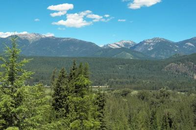 Clark Fork Residential Lots & Land For Sale: Twin Creek