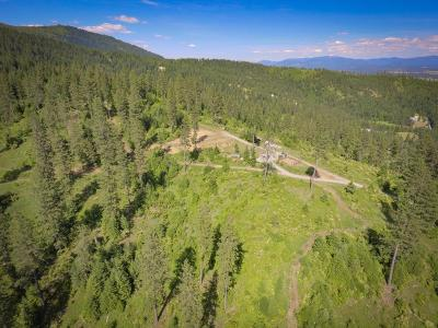 Rathdrum Residential Lots & Land For Sale: 15399 Arcadia Ln