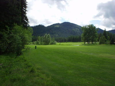 Priest Lake Residential Lots & Land For Sale: Fairway Dr