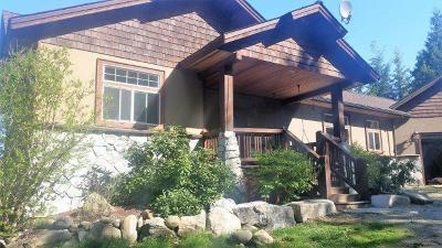 Sandpoint Single Family Home For Sale: 1131 Michael Ln