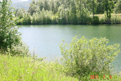 St. Maries ID Residential Lots & Land For Sale: $115,000