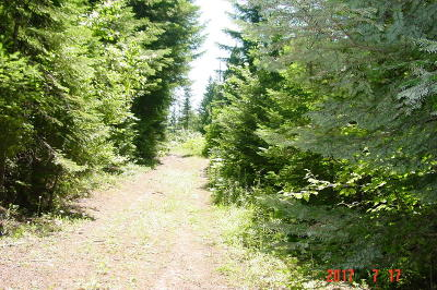 St. Maries ID Residential Lots & Land For Sale: $35,000