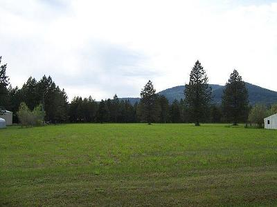 Rathdrum Residential Lots & Land For Sale: 17039 N Trails End Rd
