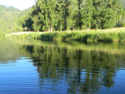 Benewah County Residential Lots & Land For Sale: NKA 86.5 Ac. S.m. River Rd
