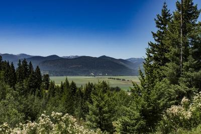 Bonners Ferry Residential Lots & Land For Sale: NNA Shamrock