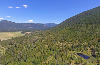 Bonners Ferry Residential Lots & Land For Sale: 53077 Hwy 95n