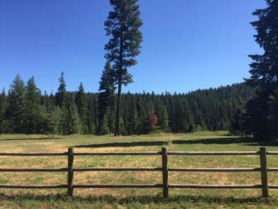 Priest Lake Residential Lots & Land For Sale: Lot 8 Shady Pines Addn