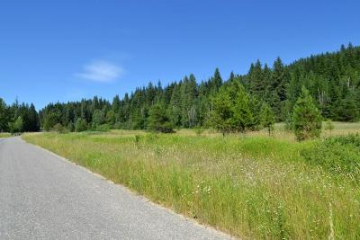 Ione Residential Lots & Land For Sale: 472 Sunset Dr N