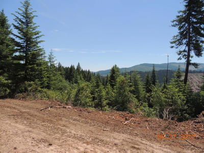 Benewah County Residential Lots & Land For Sale: 700 Peace Ln