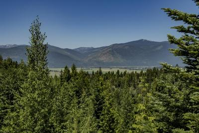 Bonners Ferry Residential Lots & Land For Sale: NNA Cottage Ln