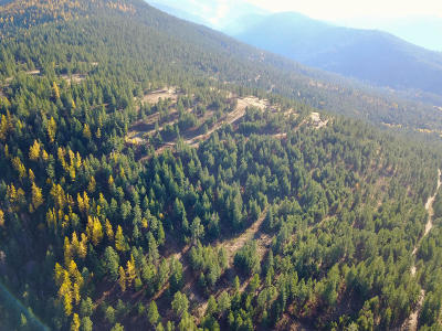 Post Falls Residential Lots & Land For Sale: NNA Big Rock Rd