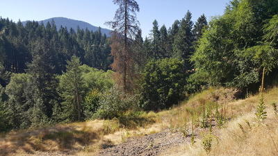 Hayden Residential Lots & Land For Sale: NNA N Lakeview Dr