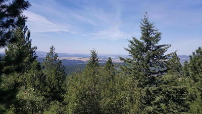 Post Falls Residential Lots & Land For Sale: Big Rock Rd