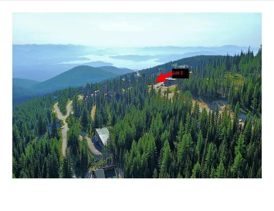 Sandpoint Residential Lots & Land For Sale: Lot 2 Wyvern Way