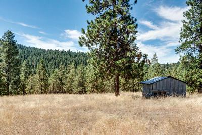 Hauser, Post Falls Residential Lots & Land For Sale: 3350 S Carpenter Loop