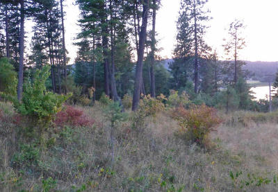 Hauser, Post Falls Residential Lots & Land For Sale: L4 B3 W. Woodlake Dr