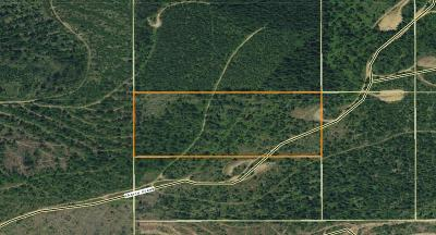 Benewah County Residential Lots & Land For Sale: 20 Acres Cherry Ck Rd.