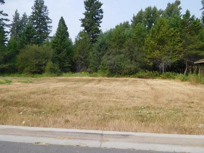 Sandpoint Residential Lots & Land For Sale: 904 Northview Drive L3