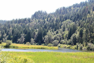 Sandpoint Residential Lots & Land For Sale: Lot 1 Pack River Flats