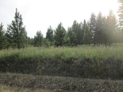 Priest River Residential Lots & Land For Sale: Lot 6 Douglas Clan Rd