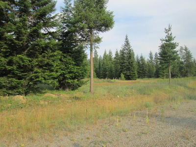 Priest River Residential Lots & Land For Sale: Lot 8 Douglas Clan Rd
