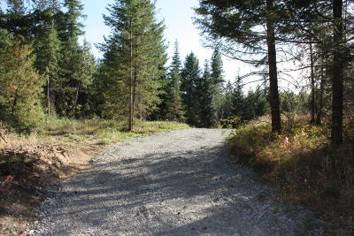 Rathdrum Residential Lots & Land For Sale: NNA Chilco