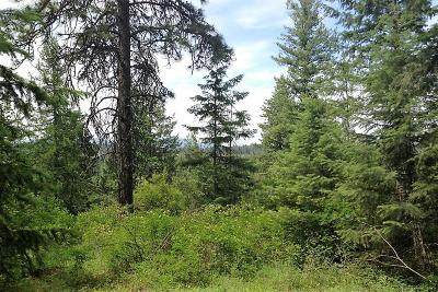 Coeur D'alene Residential Lots & Land For Sale: NNA W Riverview Dr