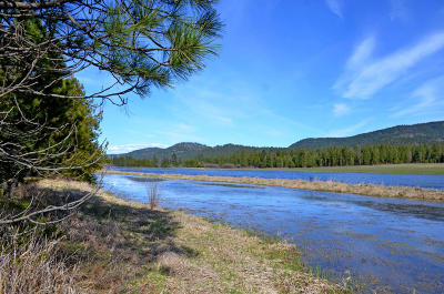 Priest River Residential Lots & Land For Sale: NNA Horn Mountain Road