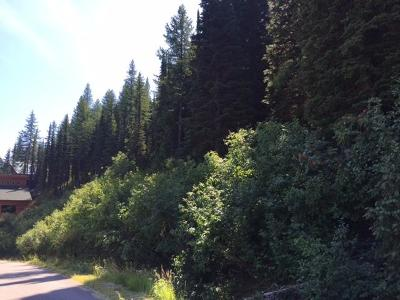 Sandpoint Residential Lots & Land For Sale: Lot 8 Crystal Springs Rd