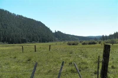 Bonners Ferry Residential Lots & Land For Sale: 7658 Meadow Creek Rd