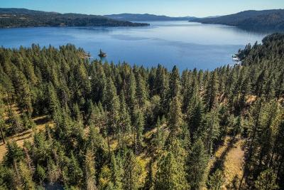 Coeur D'alene Residential Lots & Land For Sale: W Swede Bay Rd