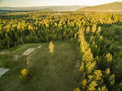 Sandpoint Residential Lots & Land For Sale: NNA Conifer Trail