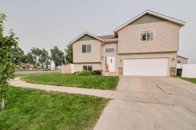 Post Falls Single Family Home For Sale: 1576 N Firestone St