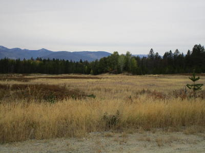 Sandpoint Residential Lots & Land For Sale: Grouse Creek Cut Off