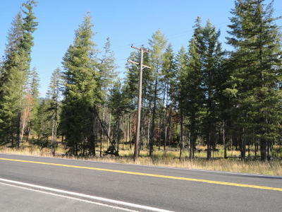 Residential Lots & Land For Sale: Highway 3 South 19.52 Acres