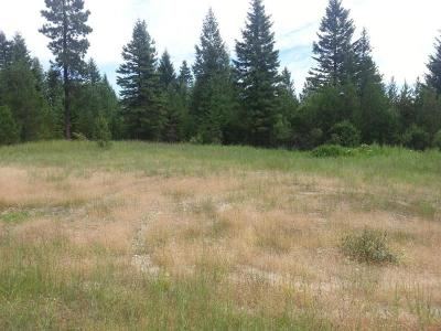 Rathdrum Residential Lots & Land For Sale: 20529 N Roundy Rd