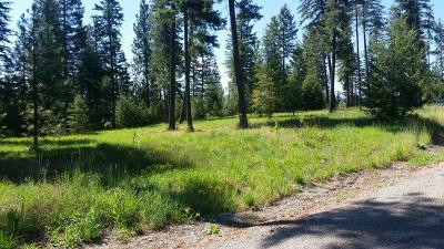 Rathdrum Residential Lots & Land For Sale: L6B2 Abeja Rd