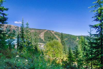 Sandpoint Residential Lots & Land For Sale: NKA Mogul Hill Rd