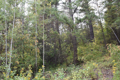 Sandpoint Residential Lots & Land For Sale: Lot 2 Fairway View Dr